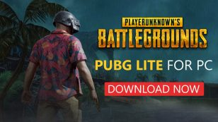 How To Download And Install PUBG Lite On PC {100% Working}